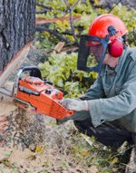 Chainsaw Safety Online Course