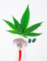 Managing Medical Marijuana in the Workplace Online